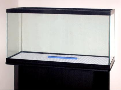 empty aquarium_what kind of aquarium should i get