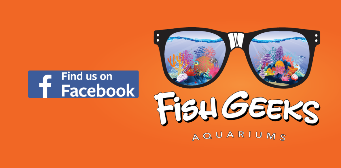 FishGeeksLogo-facebook
